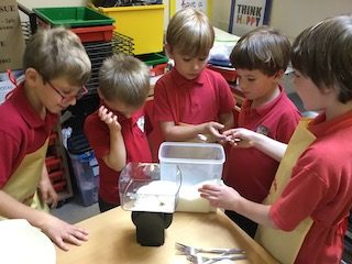 cooking with squirrel class